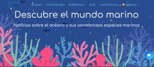 Avistamiento de cetáceos y nuestro blog