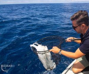 Biosean limpieza del océano en Tenerife
