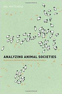 Analyzing animal societies