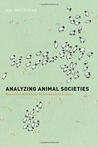Analyzing animal societies