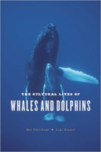Cultural lives of whales and dolphins